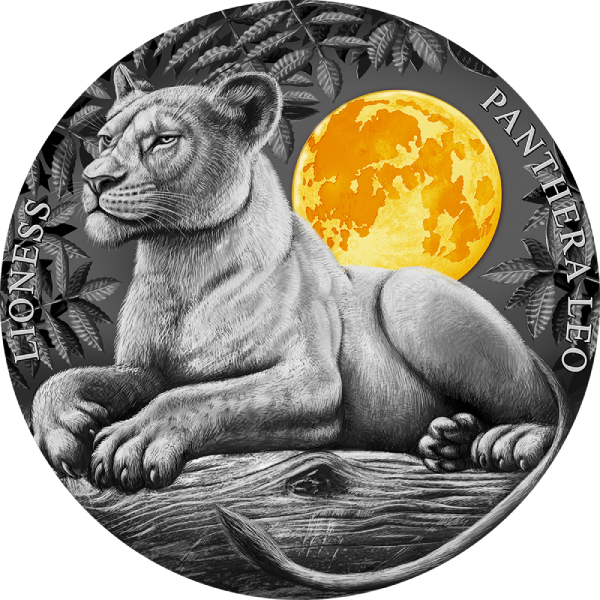 Lioness Wildlife in the Moonlight 2 oz Antique finish Silver Coin 5$ Niue 2021