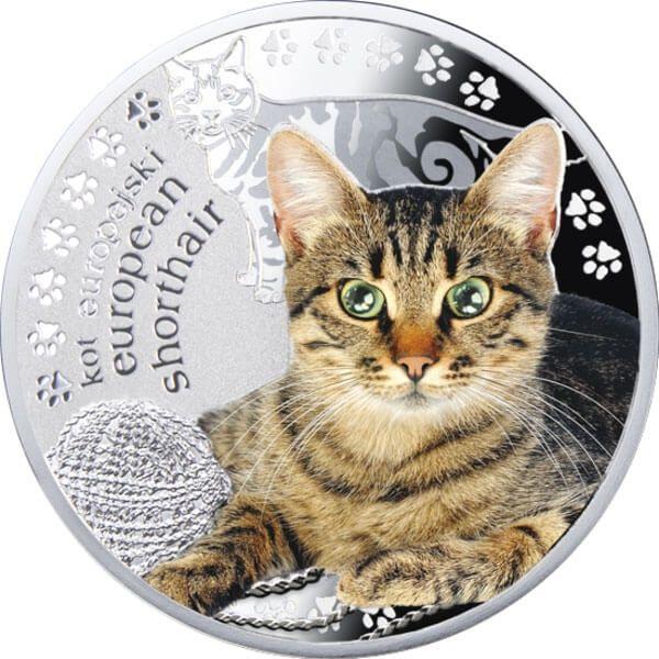 Niue 2014 1$ European Shorthair Man's Best Friends – Cats Proof Silver Coin