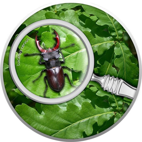Stag Beetle The Secret Garden Proof Silver Coin 500 Francs Cameroon 2020