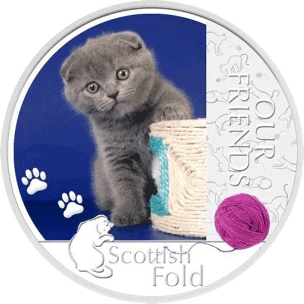 Niue 2012 1$ Scottish Fold Our Friends Kitten Proof Silver Coin