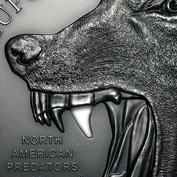 Cook Islands 2015 10$ Gray Wolf North American Predators 2oz Antique finish Silver Coin