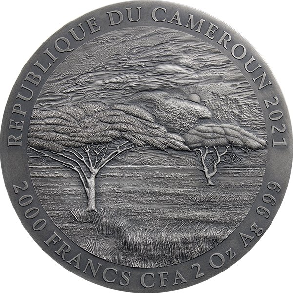Mountain Gorilla Expressions of Wildlife 2 oz Antique finish Silver Coin 2000 Francs Cameroon 2021