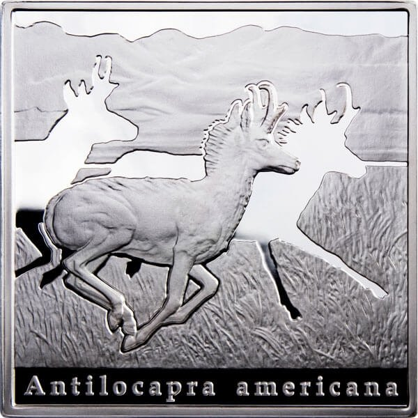 Niue 2010 1$ Pronghorn Oddities of Natures Proof Silver Coin