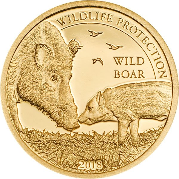 Wild Boar Wildlife Protection 0.5g Proof Gold Coin Mongolia 2018 1000 togrog