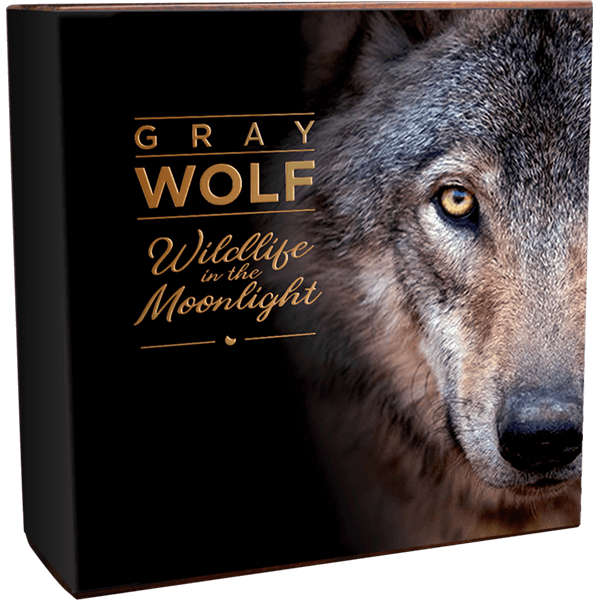 Gray Wolf Wildlife in the Moonlight 2 oz Antique finish Silver Coin 5$ Niue 2020