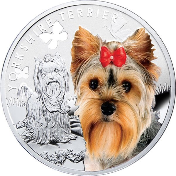Yorkshire Terrier Man's Best Friends Proof Silver Coin 1$ Niue 2014