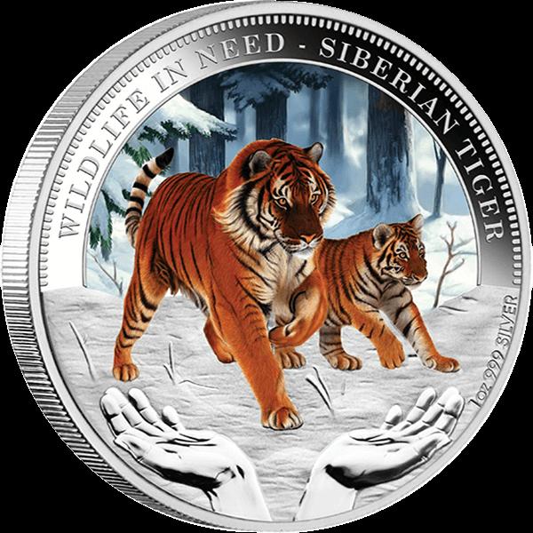 Siberian Tiger Wildlife in Need Proof Silver Coin 1$ Tuvaku 2012