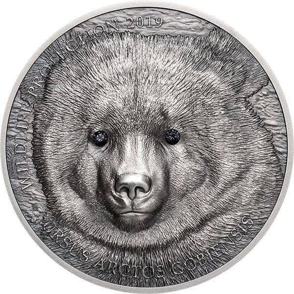 Mongolian Gobi Bear  Wildlife Protection 1oz Antique finish Silver Coin 500 togrog Mongolia 2019