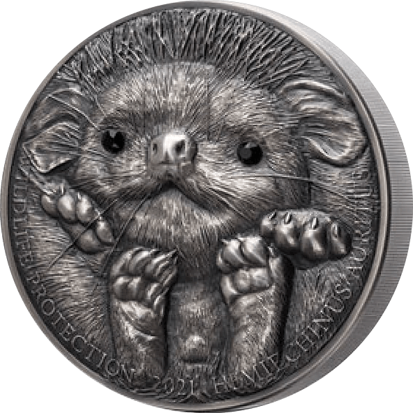 Hedgehog Wildlife Protection 1 Kilo Antique finish Silver Coin 20000 togrog Mongolia 2021