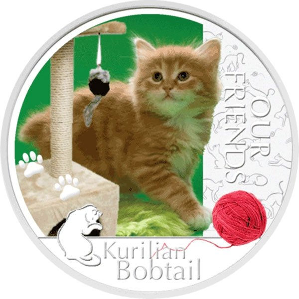 Niue 2012 1$ Kurilian Bobtail Our Friends Kitten Proof Silver Coin