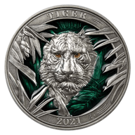 Tiger Colours of Wildlife 3 oz Antique finish Silver Coin 5$ Barbados 2021