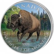Canada 2013 5$ Bison Colored Wildlife Series UNC Silver Coin