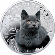 British Cat Man's Best Friends – Cats Proof Silver Coin 1$ Niue 2014