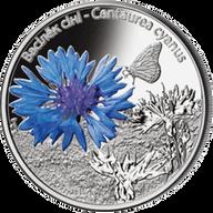 Belarus 2012 10 rubles Centaurea cyanus - The Cornflower Belarusian Flowers Proof Silver Coin
