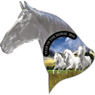 Niue 2014 1$  Irregular Horse head   Year of the Horse  Proof Silver Coin