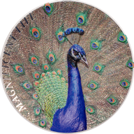 Cook Islands 2015 5$ Magnificent Life 2015 – Peacock Proof Silver Coin