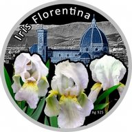 Iris Florentina Irises Proof Silver Coin 1$ Niue 2013