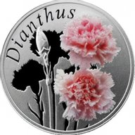Belarus 2013 10 rubles Dianthus Proof Silver Coin