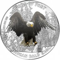 Niue 2013 2$ American Bald Eagle Birds of Prey Proof Silver Coin