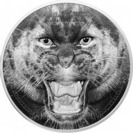 Black Panther Rare Wildlife 2 oz Proof Silver Coin 1500 Shillings Tanzania 2016