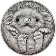 Mongolia 2012 500 togrog Long-eared Hedgehog - Hemiechinus auritus UNC Silver Coin