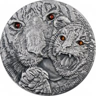 Niue 2013 1$  Tigers Wildlife Family Silver Antique finish Coin