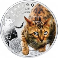 Bengal Cat Man's Best Friends – Cats Proof Silver Coin 1$ Niue 2014